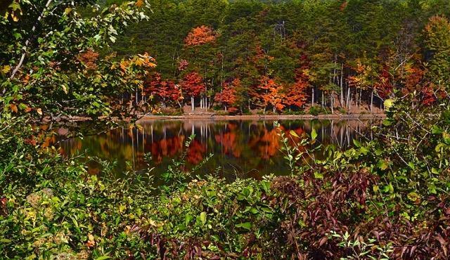 Echo Lake, NH - Dave Woodard