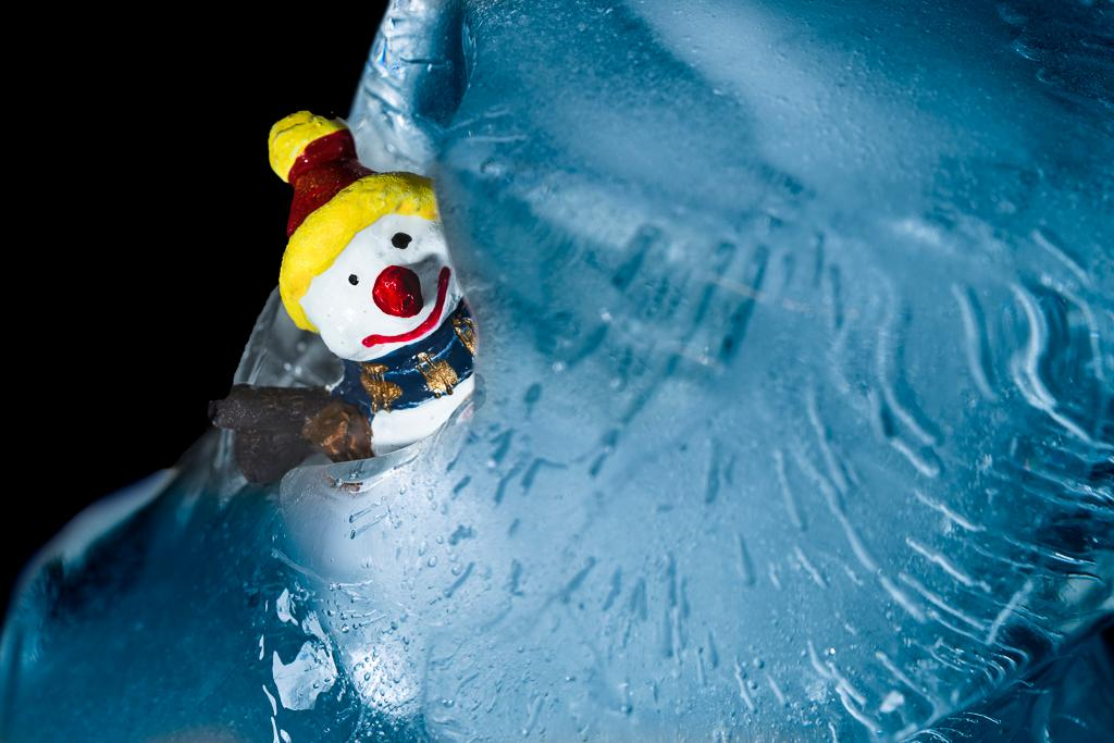 Snowman Escapes - Diane Rychlinski