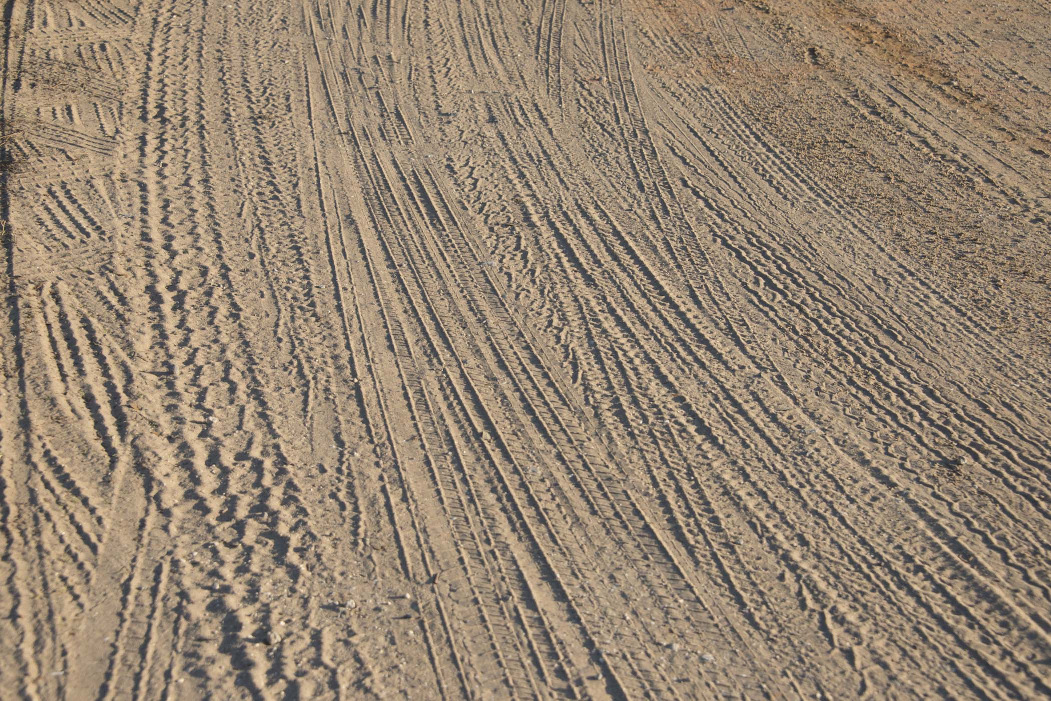 3rd place -  Tire Tracks - Phyllis Bankier