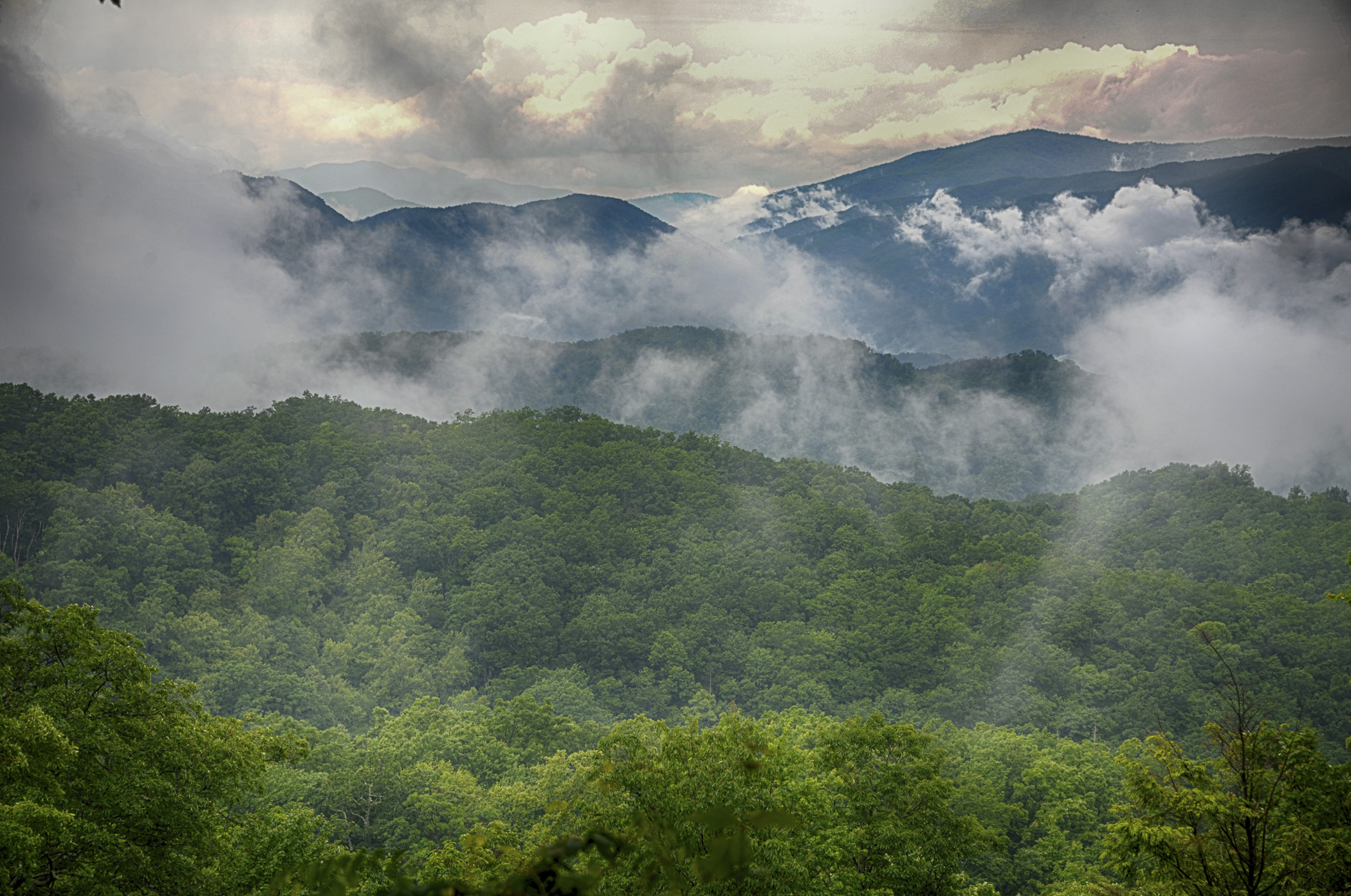 Great Smokey Mountains - Phyllis Bankier