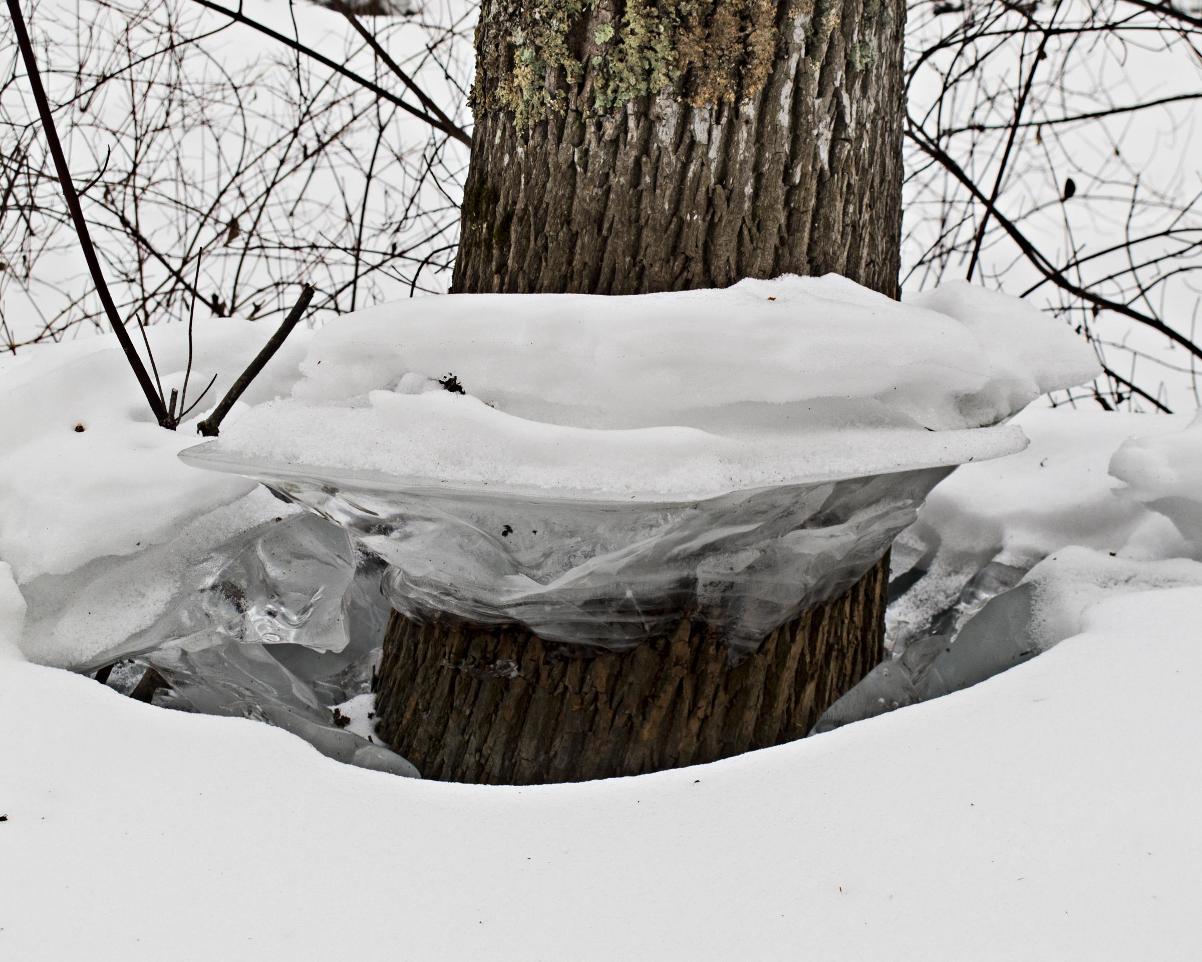 Frozen in Time-Audrey Waitkus