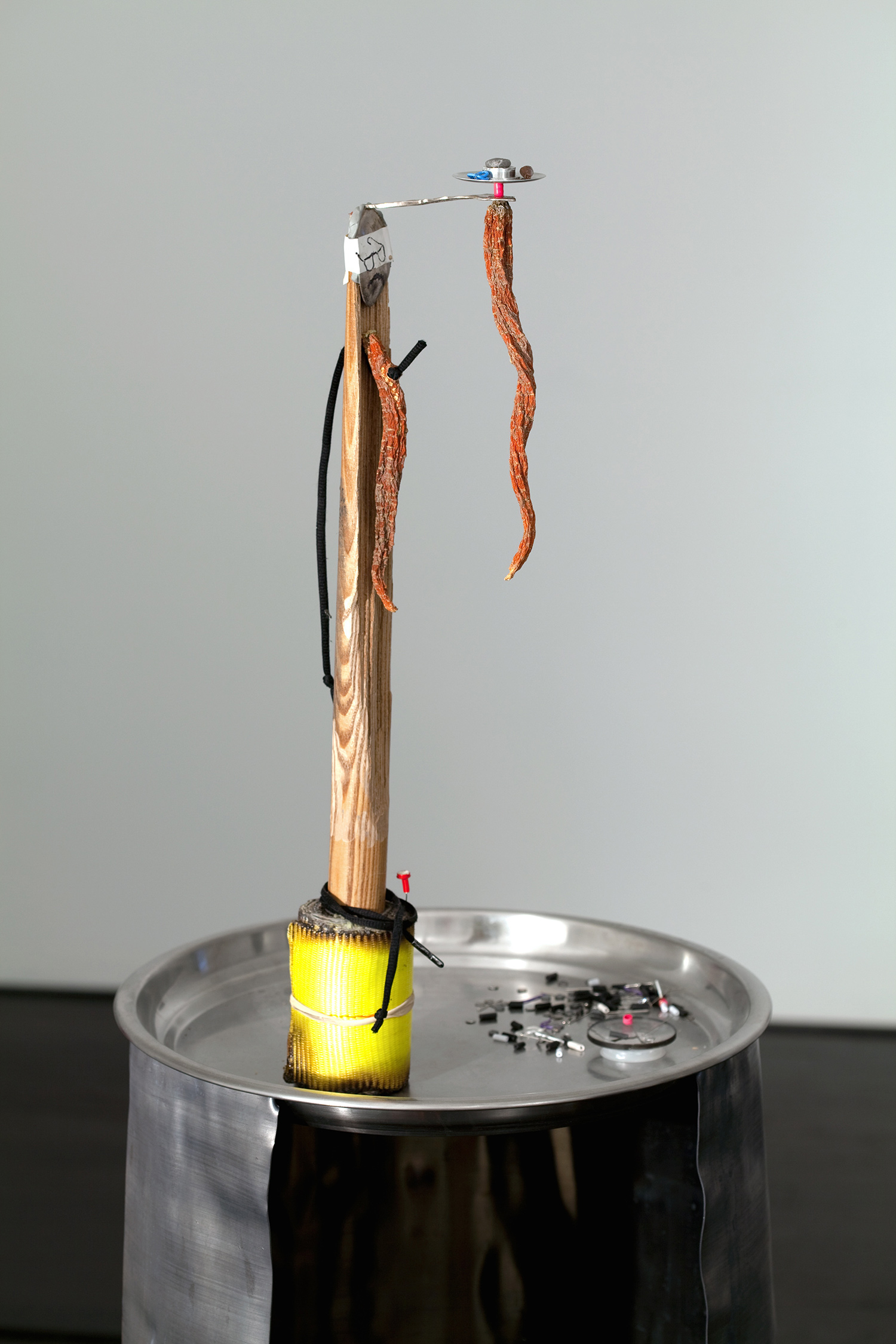 "Luxury Leader Voodoo Doll . Detail. Lead, aluminum, oak, carrots, show string, nylon, dog hair, ink, silver spoon, pins. 57"" x 15.5"" x 15.5"". 2009."