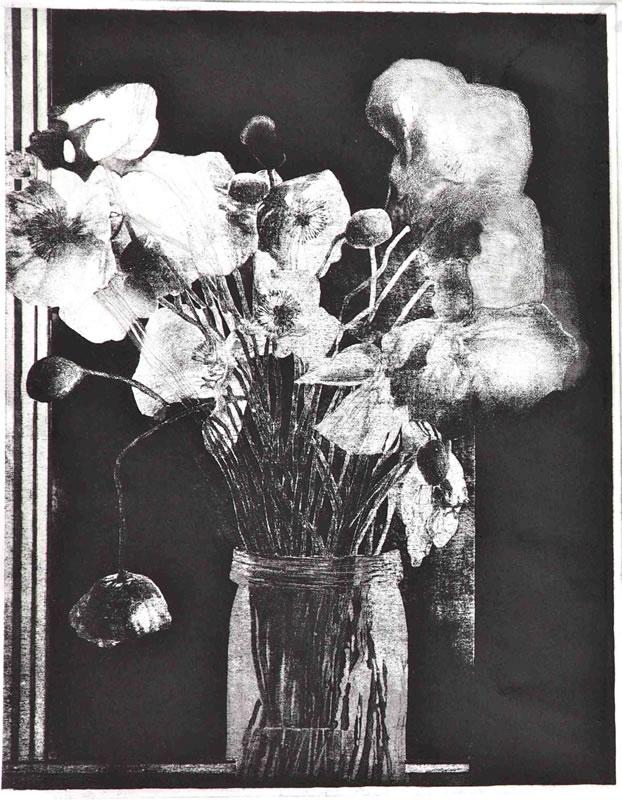 Poppies, Silhouette at night Balmain
