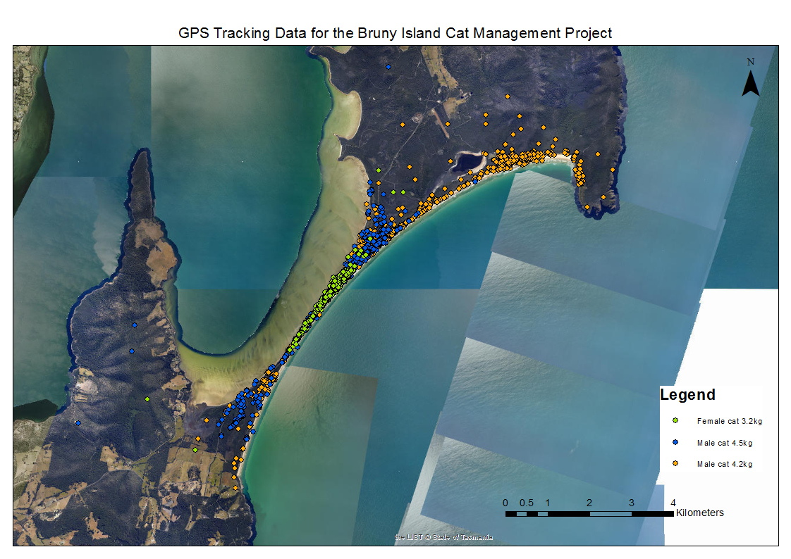 GPS Tracking Data of 3 feral cats at the Neck Game Reserve for the Bruny Island Cat Management Project Image courtesy of DPIPWE, Invasive Species Branch.