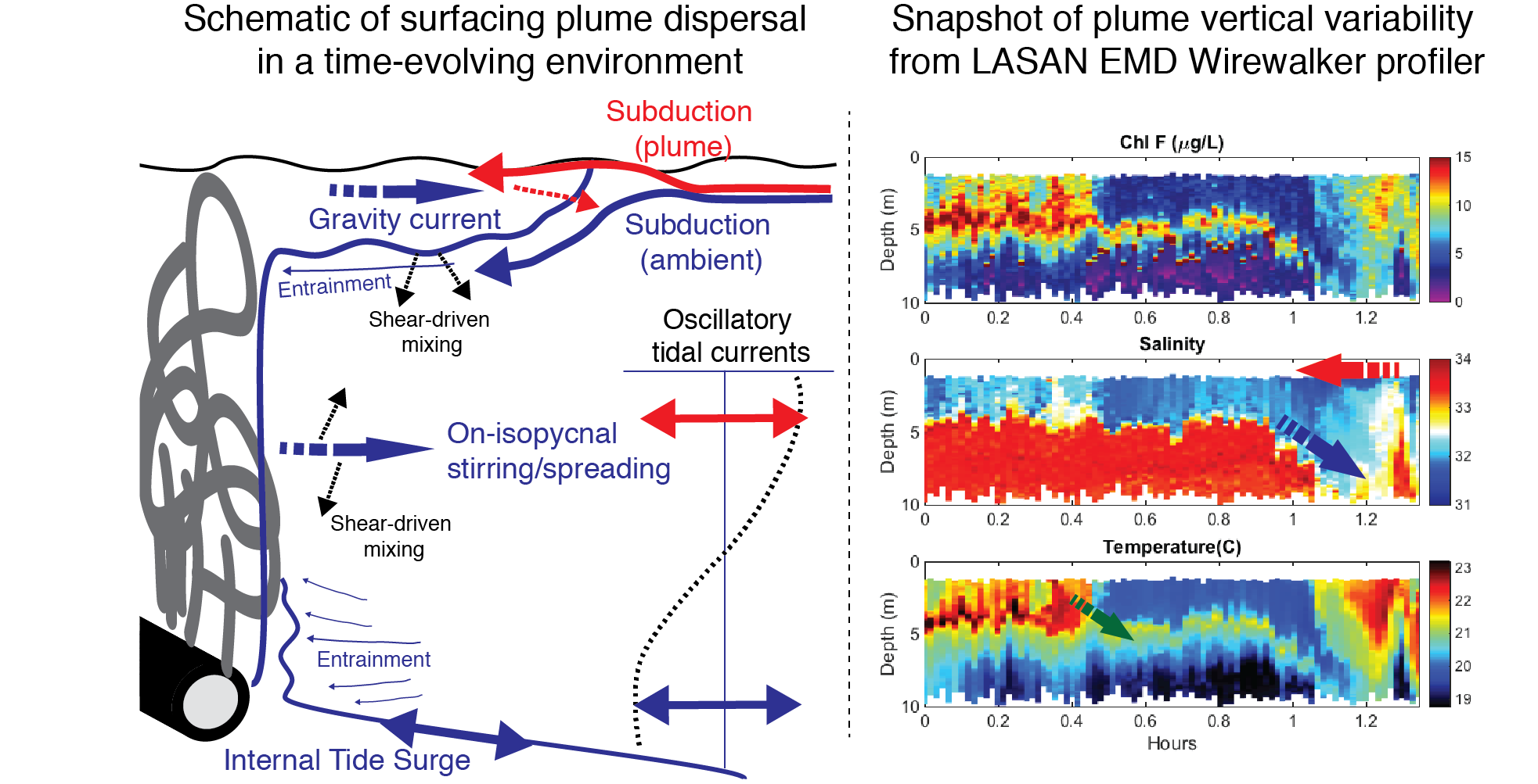 Schematic of plume dispersal pathways in a complex, time-dependent environment.