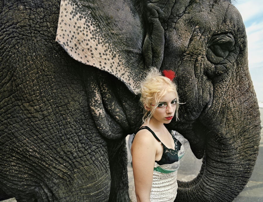 17_Natalie_Elephant_1b_2008v2_WOW_Katz.jpg