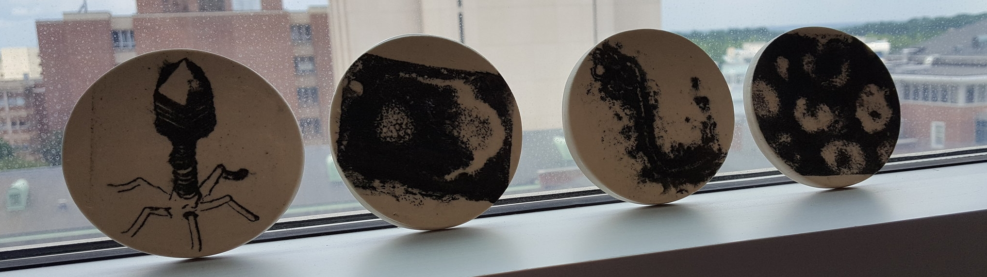 virus pottery by maria gainey (phage t7, hsv, ebola, flu)