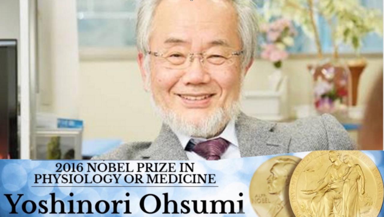 nobelpreis.jpg