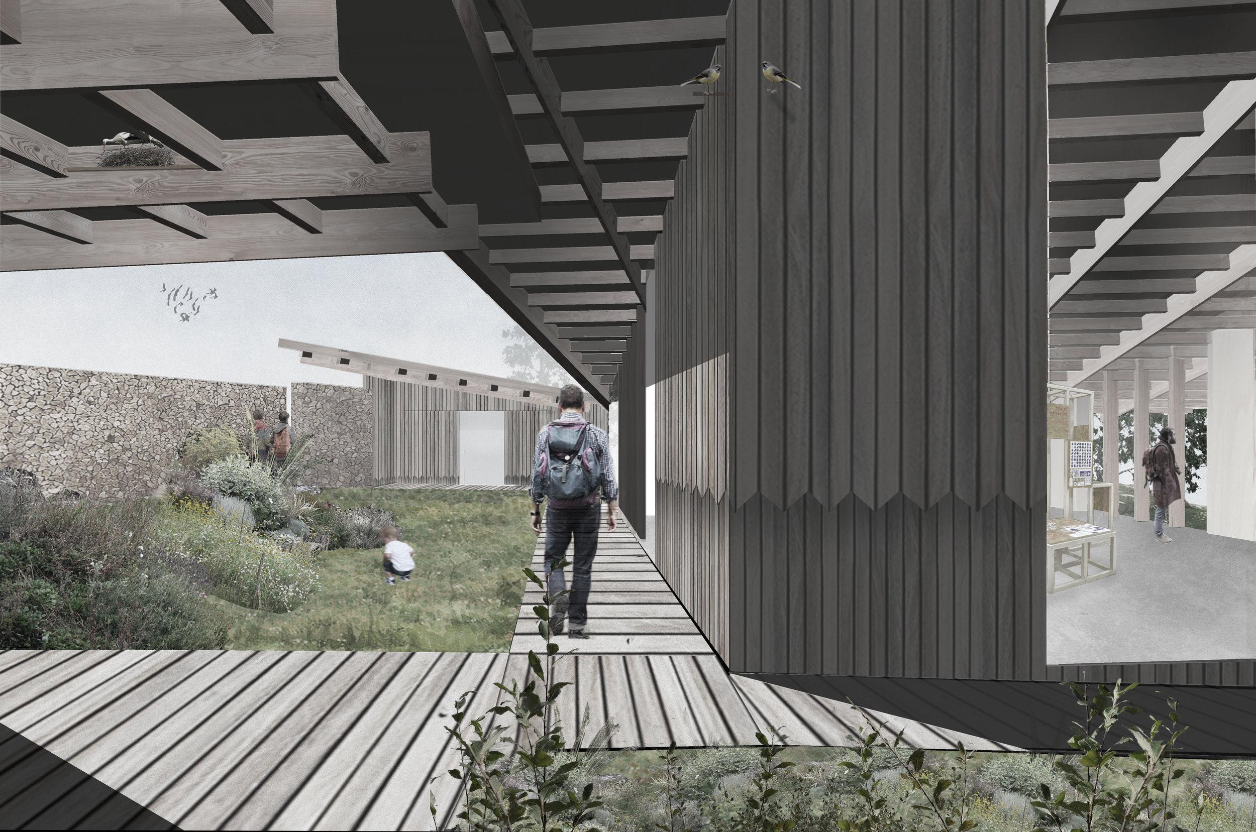 MOCT_Sevenoaks Nature & Wellbeing Centre_courtyard elevation1.jpg