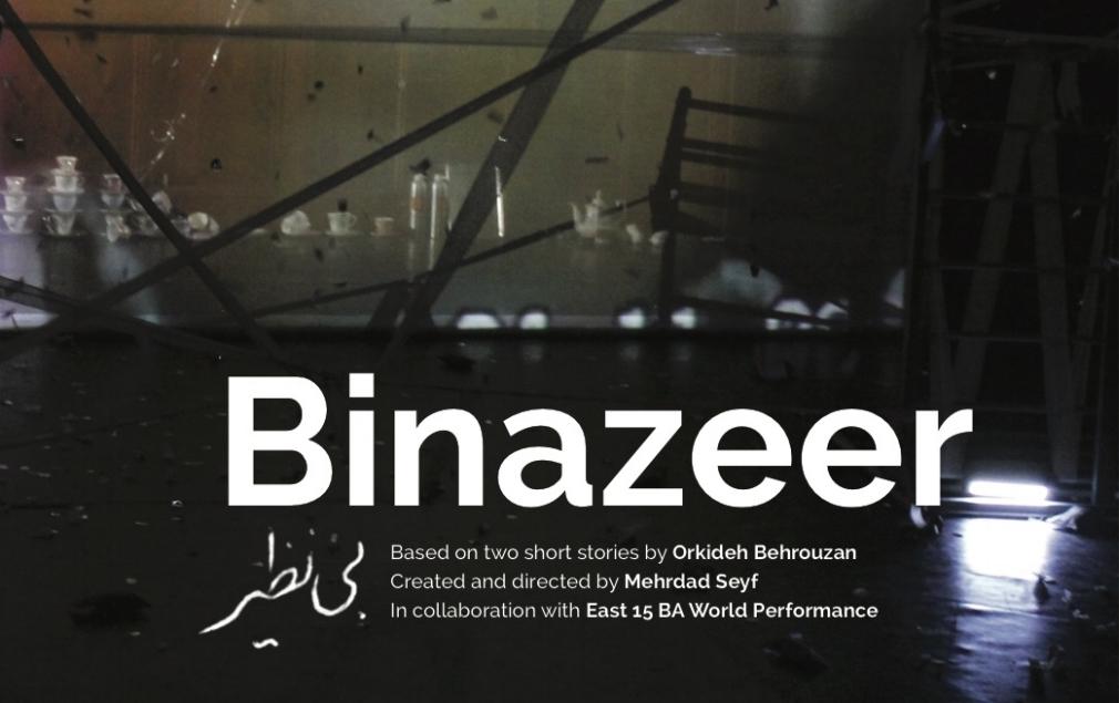 Binazeer Brochure.jpg