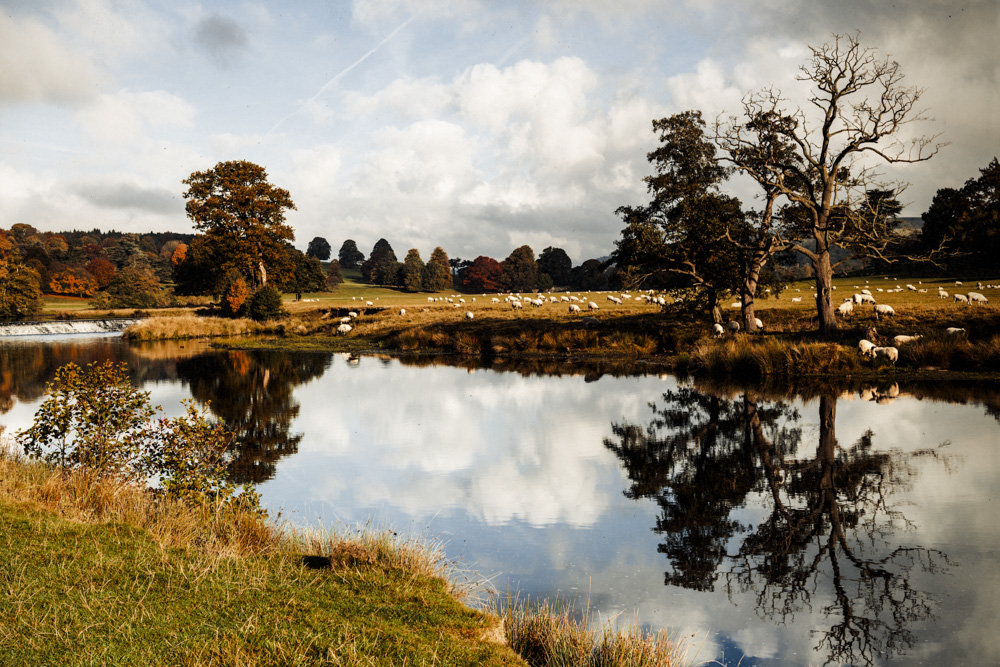 Chatsworth Park. Shortlist International Garden Photographer of the Year 2016