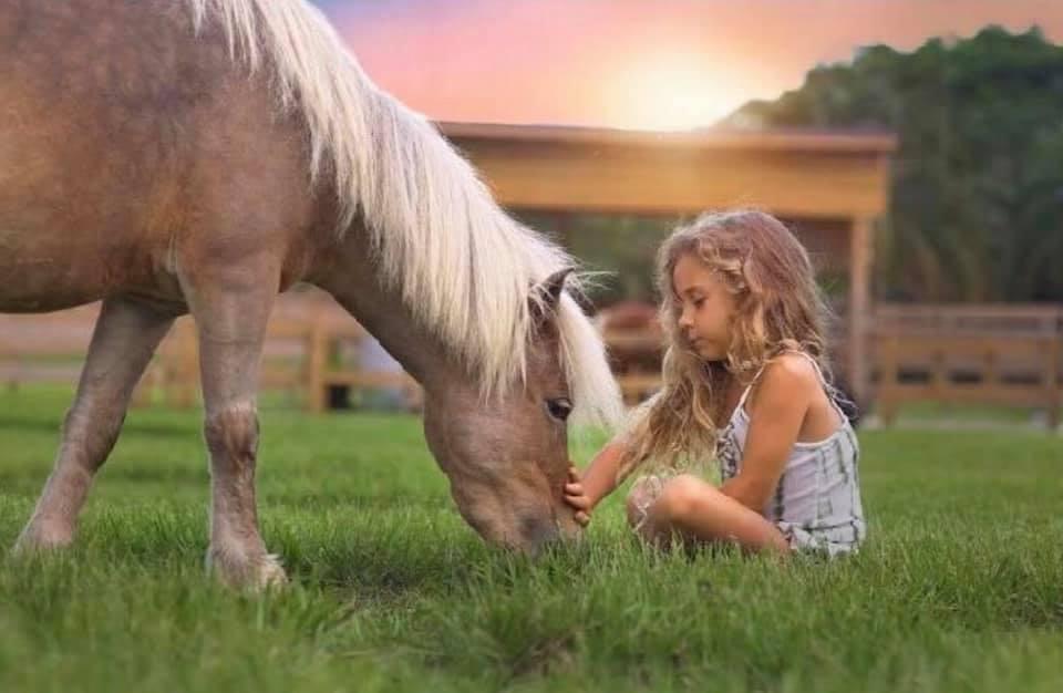 Rainbow stars: sound & meditation experience for kids - October 12 6PMThree 7's Animal Sanctuary, Parkland