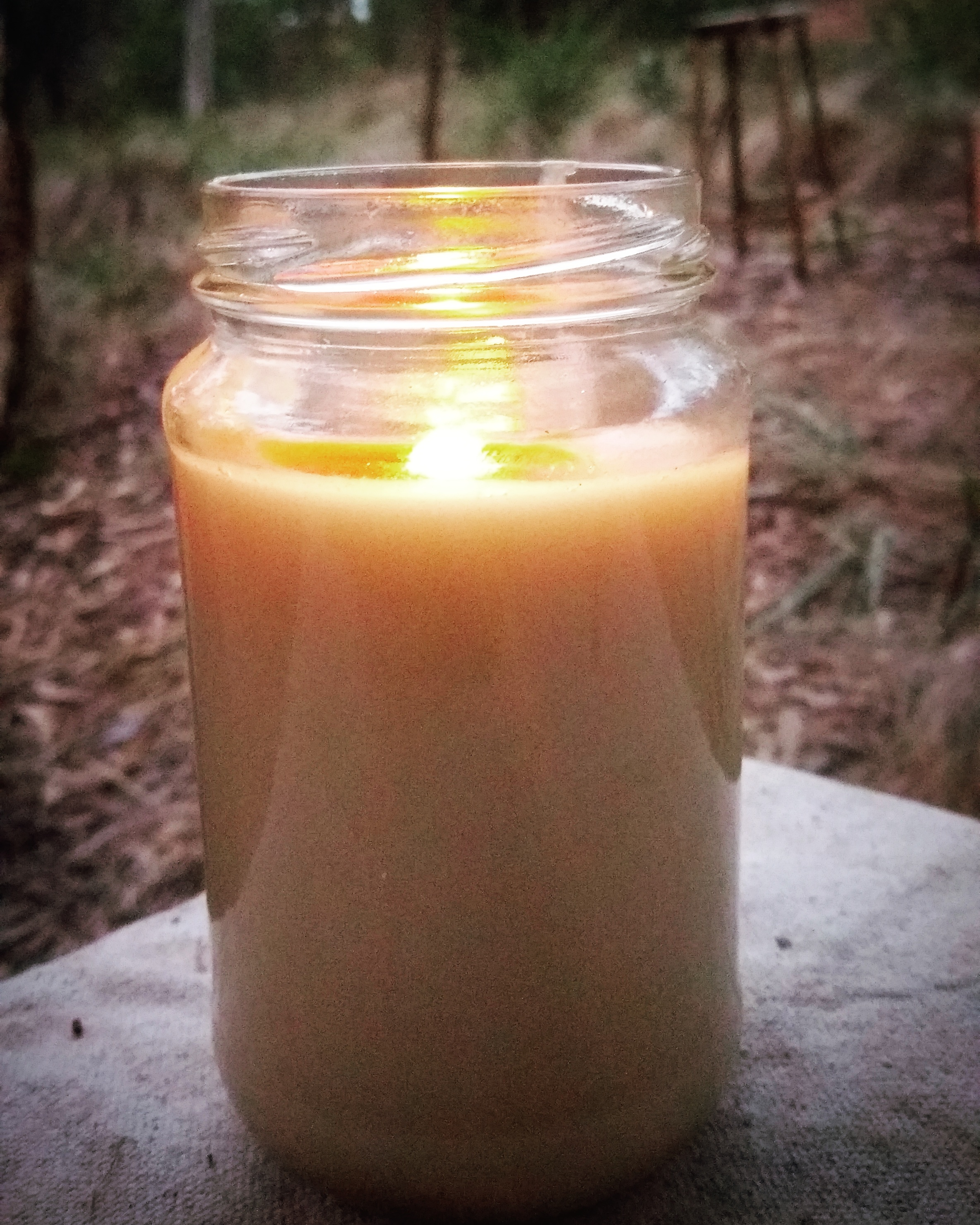 Pictured: A fat candle made from tallow (sheep fat), an hour after it was first lit.