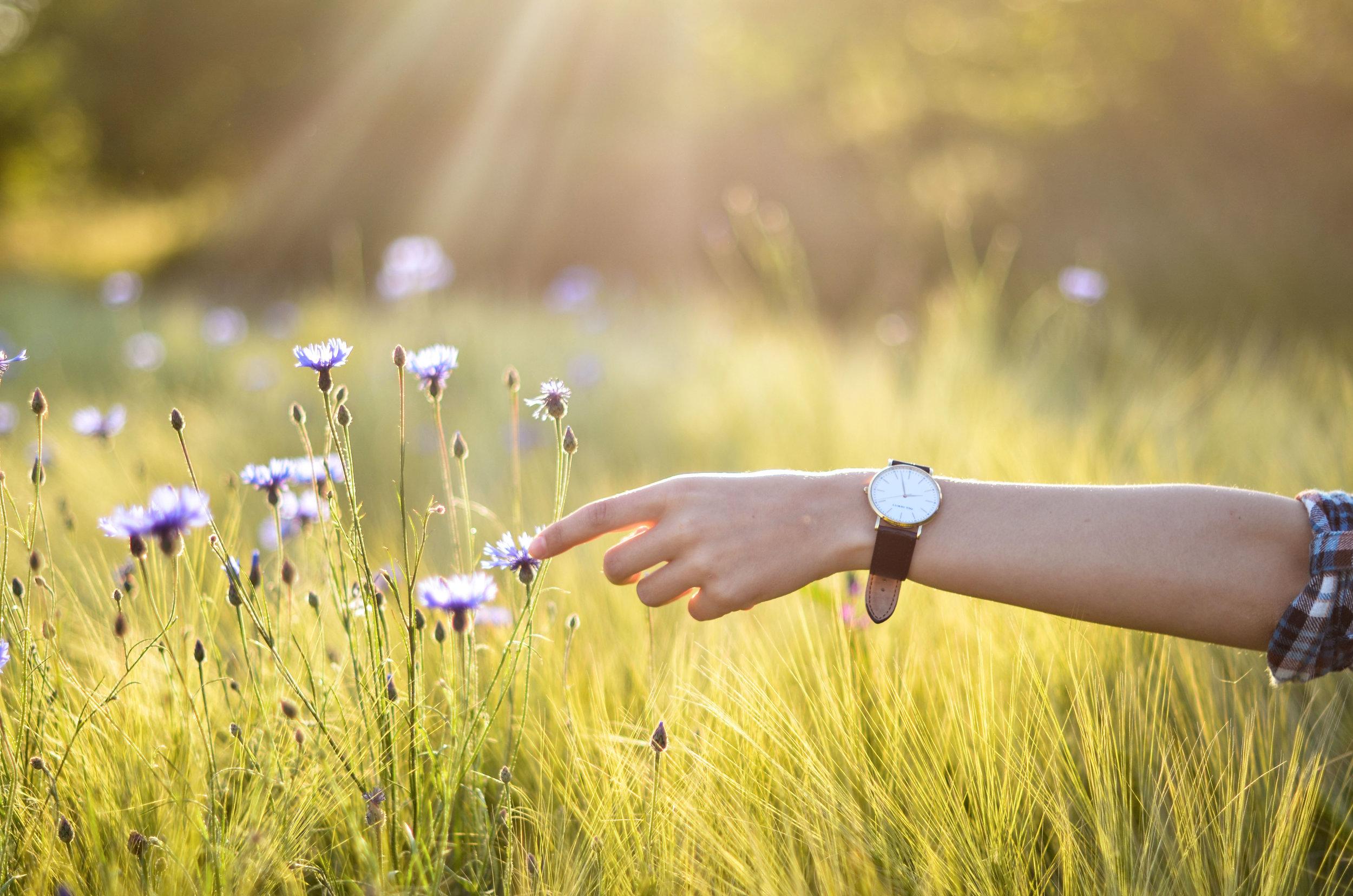 Paul Hewitt - watches, accessory