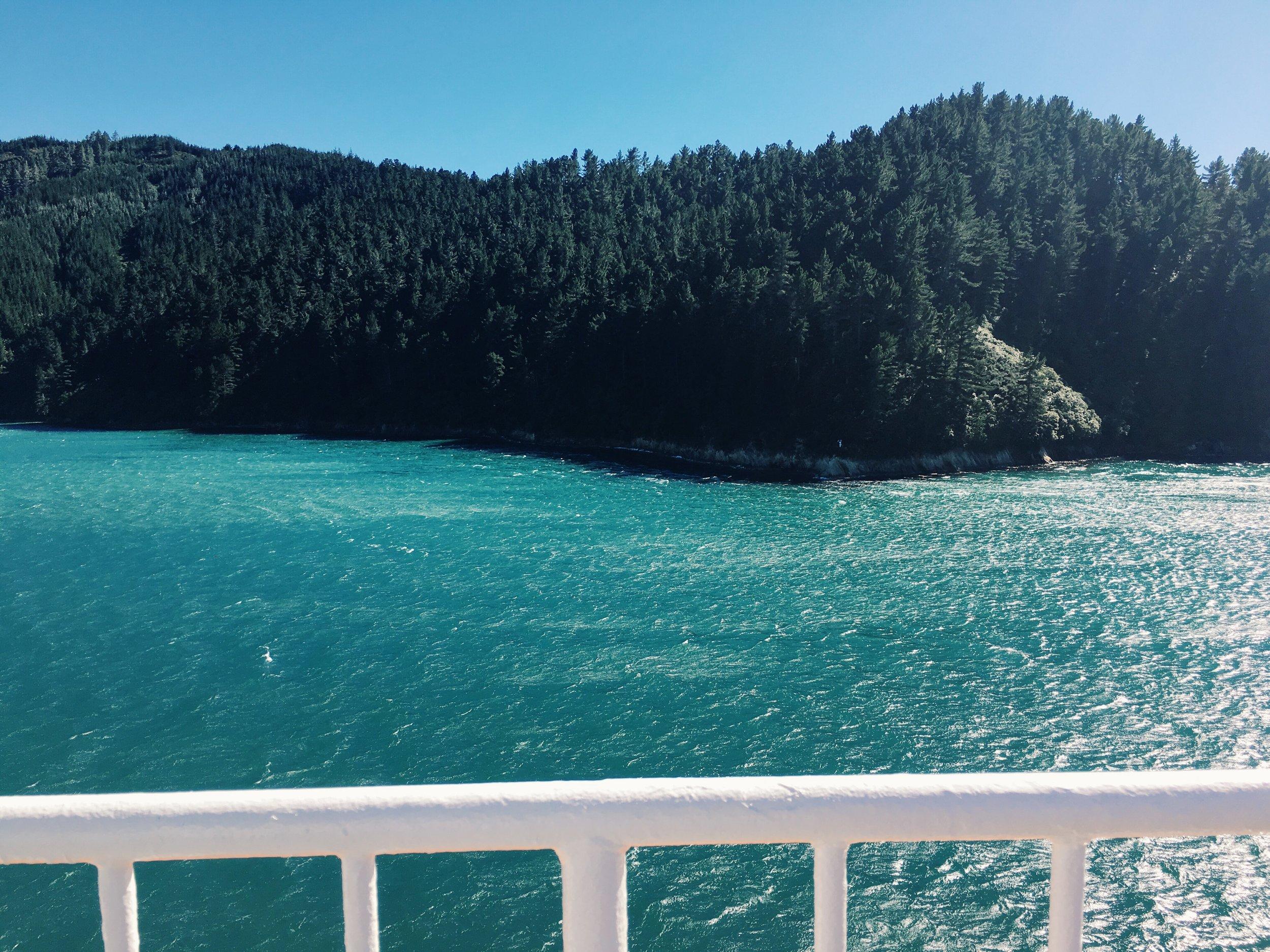 wellington-newzealand-ferry-gretacaptures-kiwiexperience