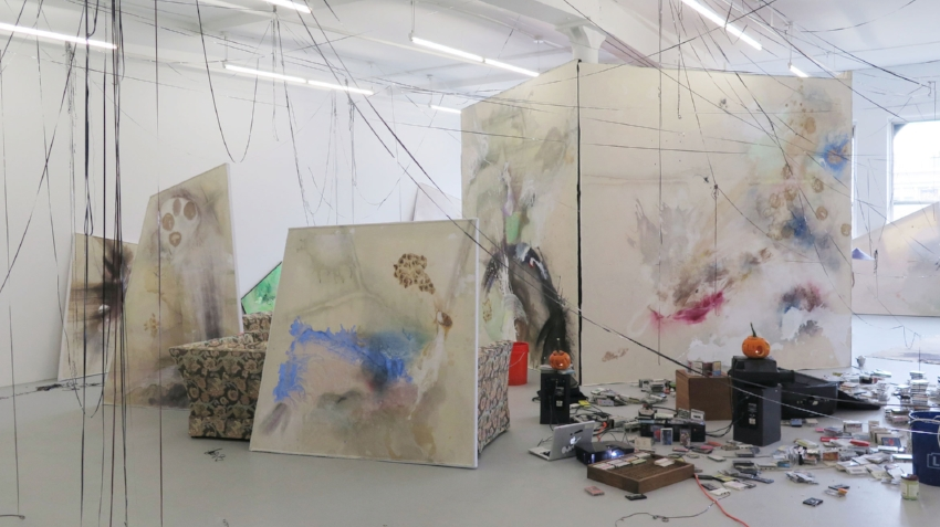 Lucy Dodd, installation view of Wuv Shack at David Lewis