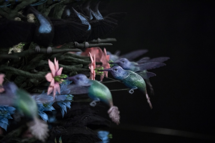 Mat Collishaw, The Centrifugal Soul, (detail), 2016, Courtesy the artist and Blain Southern, Photo Rémi Chauvin