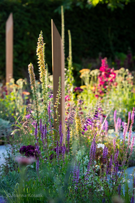 Tom Simpson Garden Design Hampton Court - 6.jpg