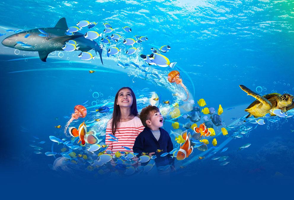 sealife-london-aquarium.jpg