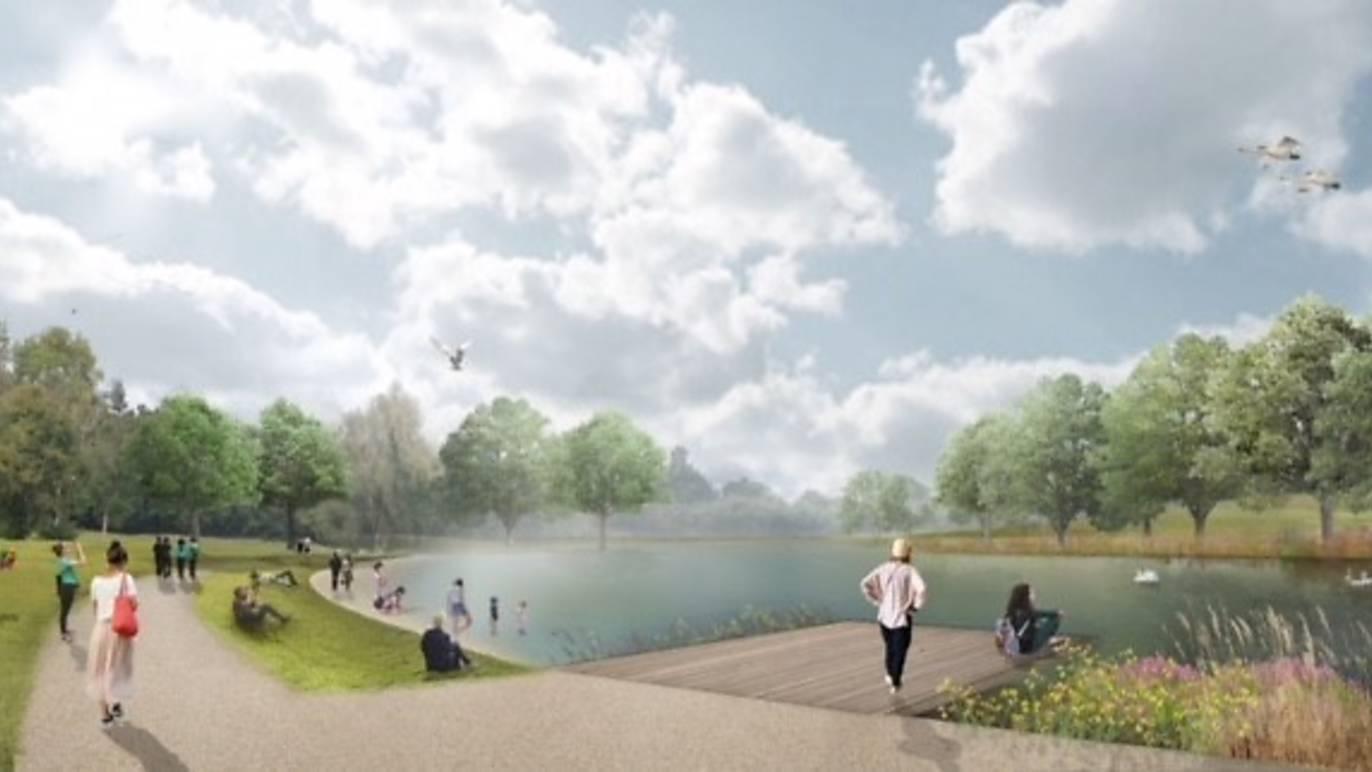 beckenham place park wild swimming lake.jpg