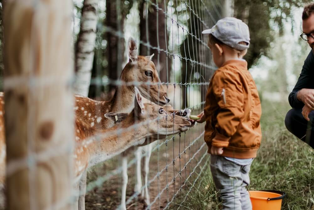 London+Farm+Zoo+Children.jpg
