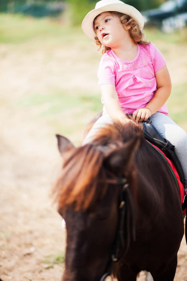 pony rides farm London.jpg