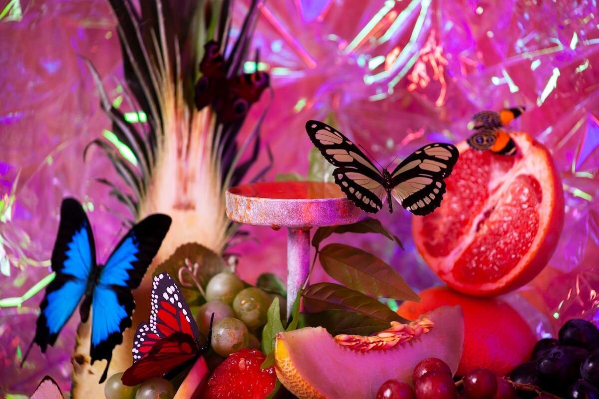 Butterfly Biosphere.jpg