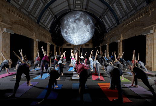 Yoga at the natural history museum (1).png