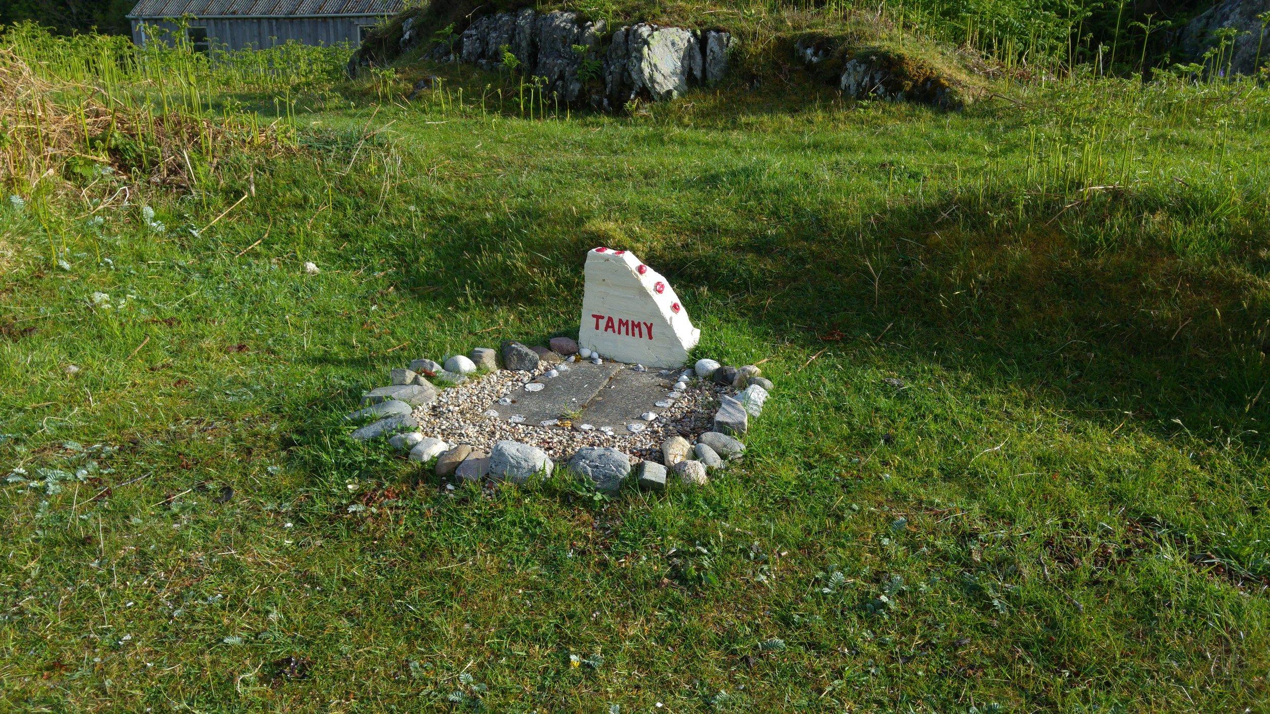 Small grave, Ardtoe
