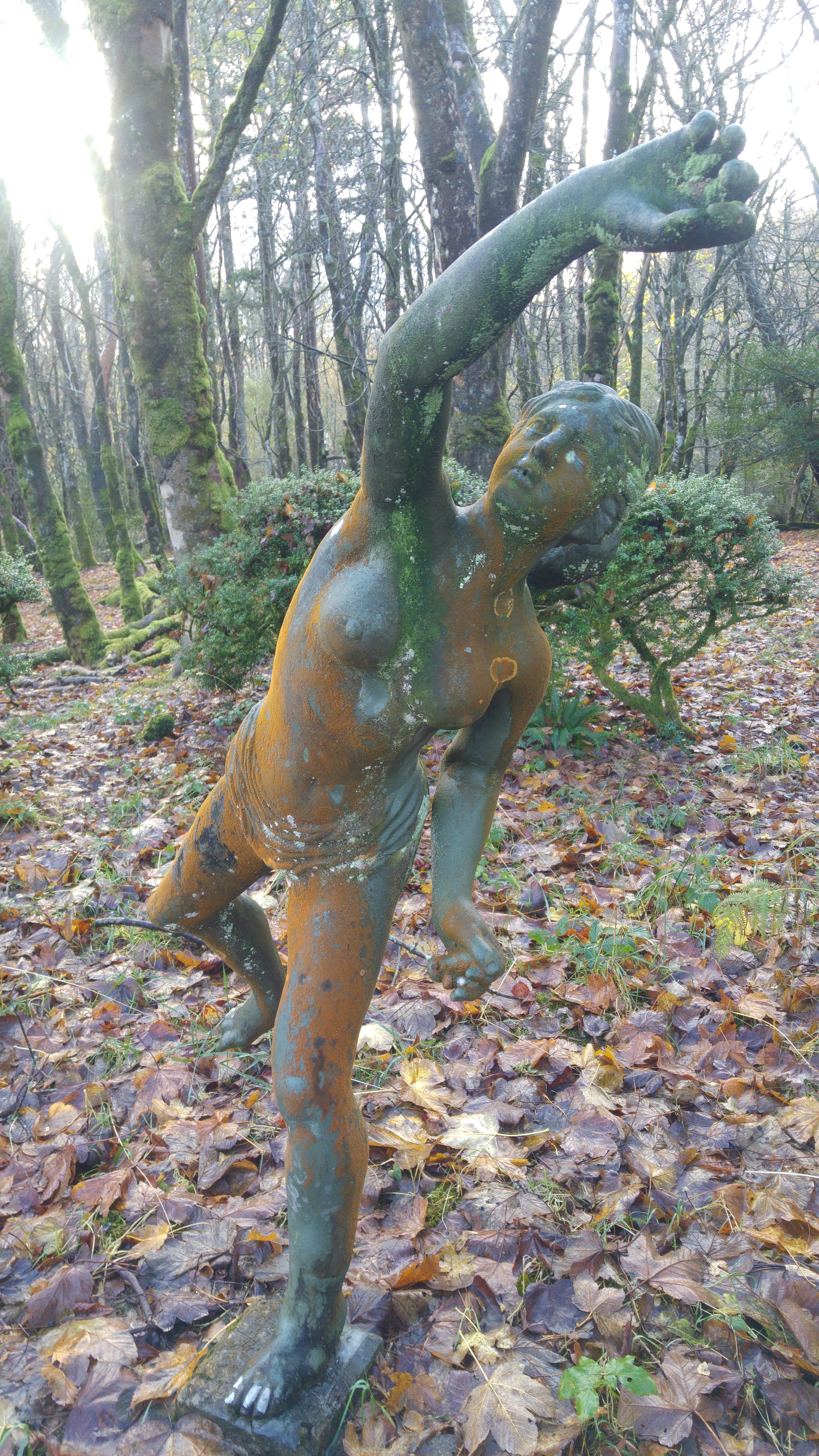 I came across this statue in woodland within the castle grounds. I think it dates back to the original owner in the pre 1920 period. I was told interesting stories of the parties that took place at this time.....