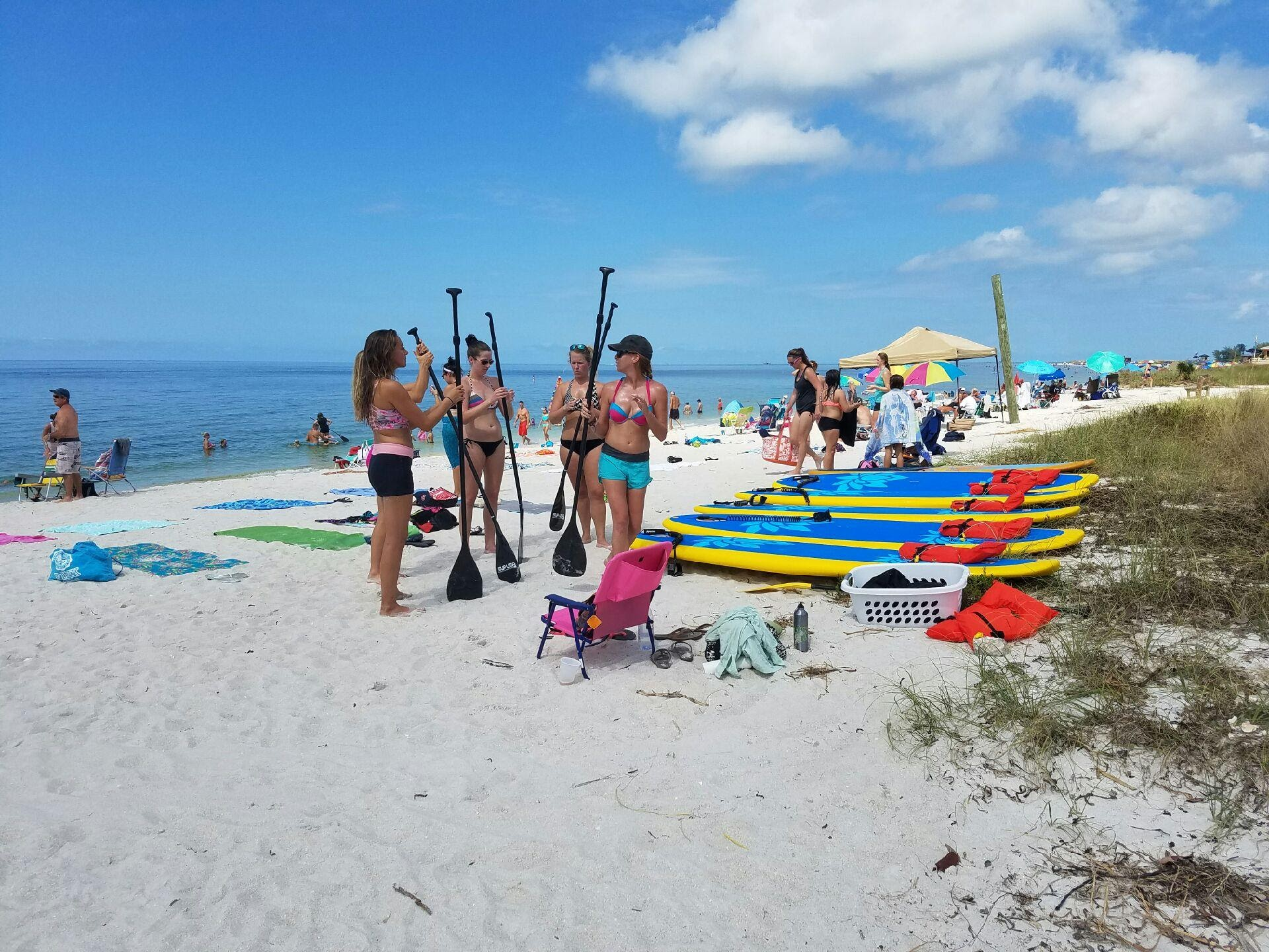 Paddle boards during a SUP 101 lesson on Anna Maria Island