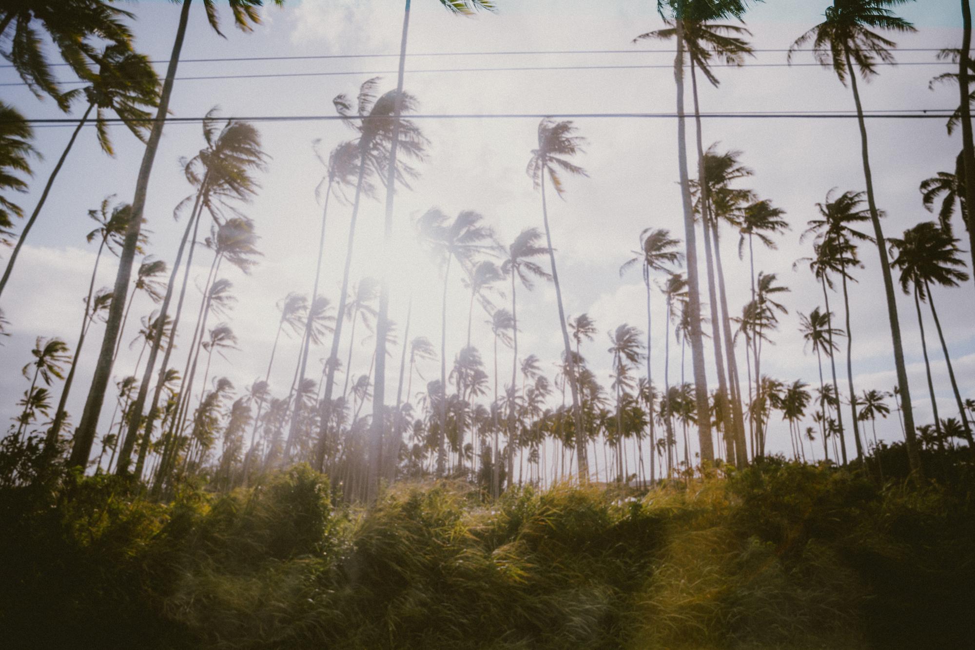 KauaiIsland.jpg