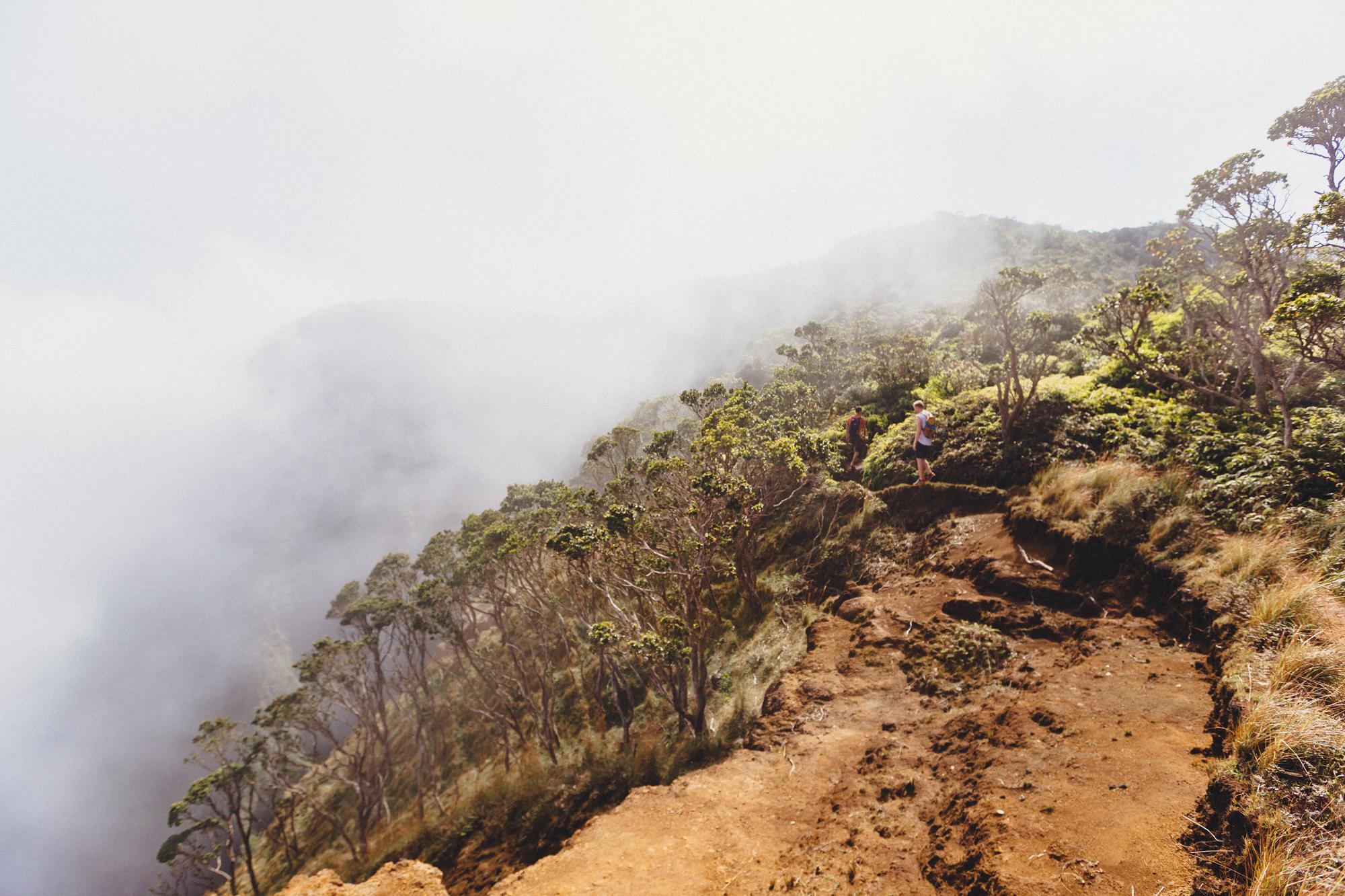 KauaiIsland-70.jpg