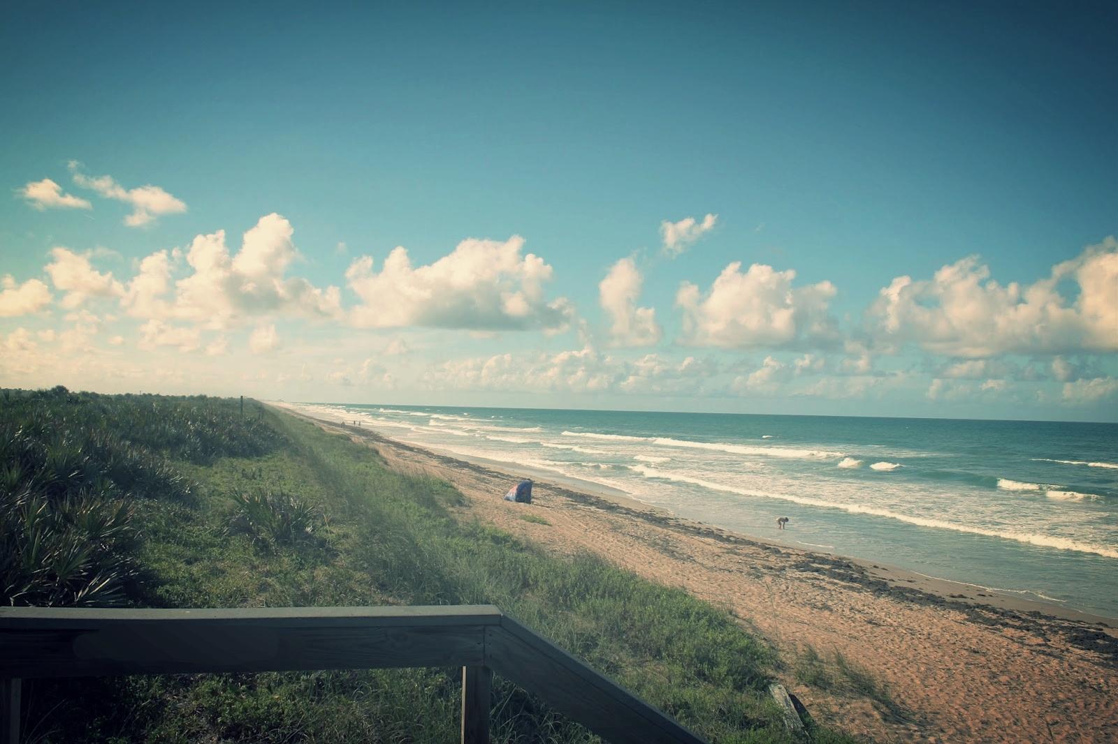Canaveral National Seashore Florida May 2015 Copyright Phillip Lott Phillip's Natural World beach d.jpg