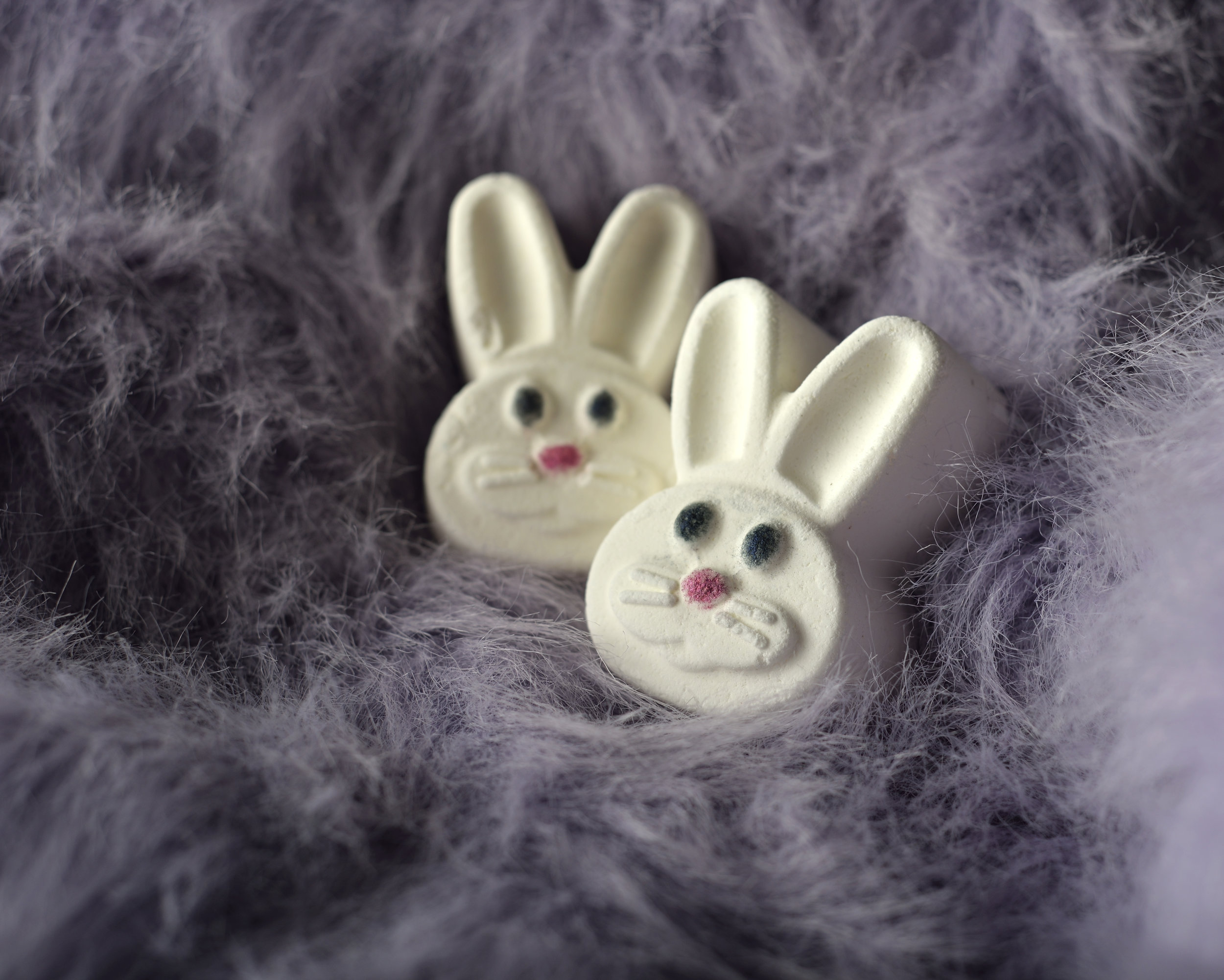 Halifax_Product_Photography_Click_Productions_Bunnies.jpg