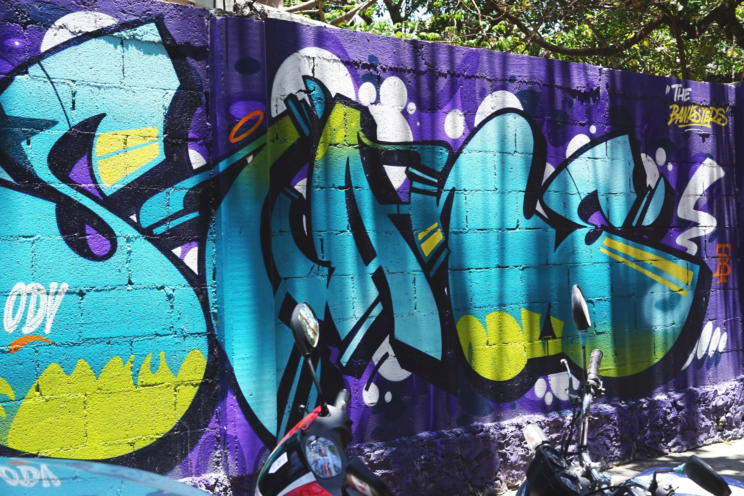 Artist The banksteps