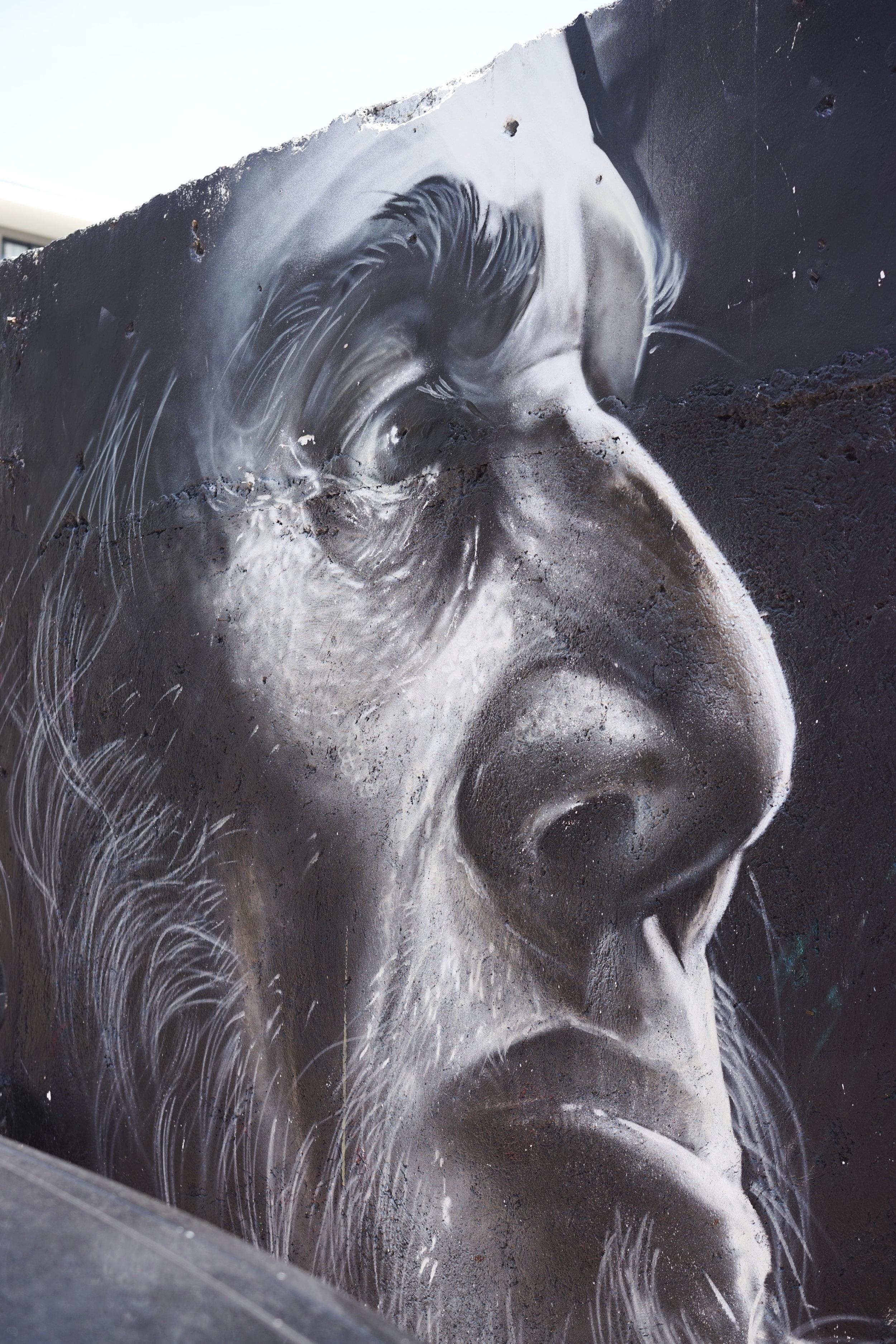 Artist Hugo Jockas