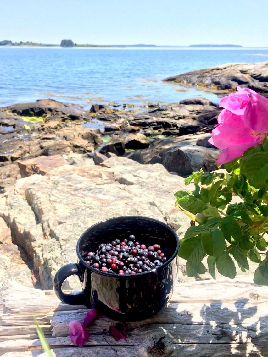 blueberries.jpg