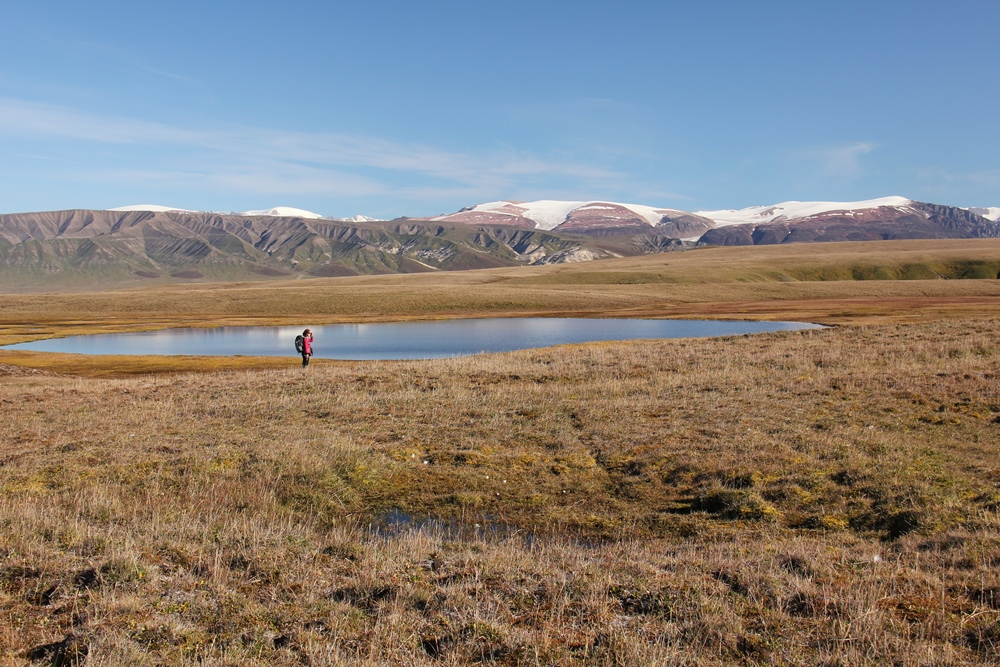 Bylot Island Migratory Bird Sanctuary. photo: Christian Marcotte © Environment and Climate Change Canada