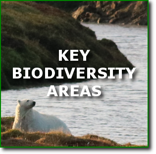 B4-2-EN-biodiversity.png