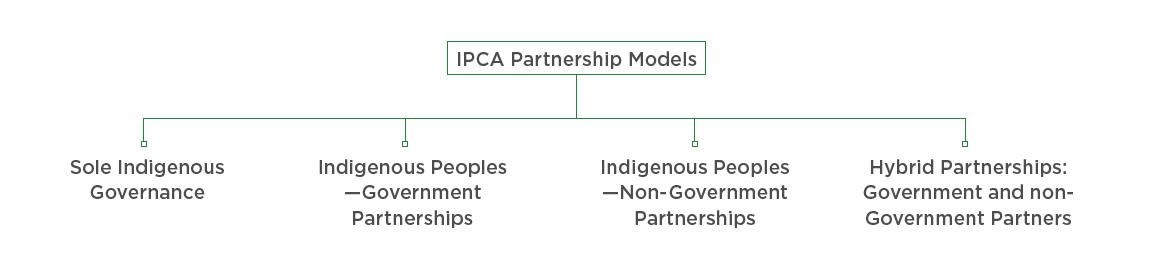 IPCA governance model.PNG
