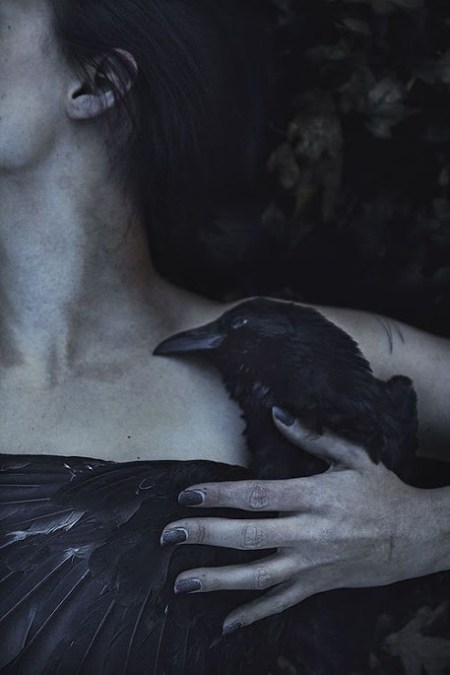The Girl and the Raven by Elena Helfrecht