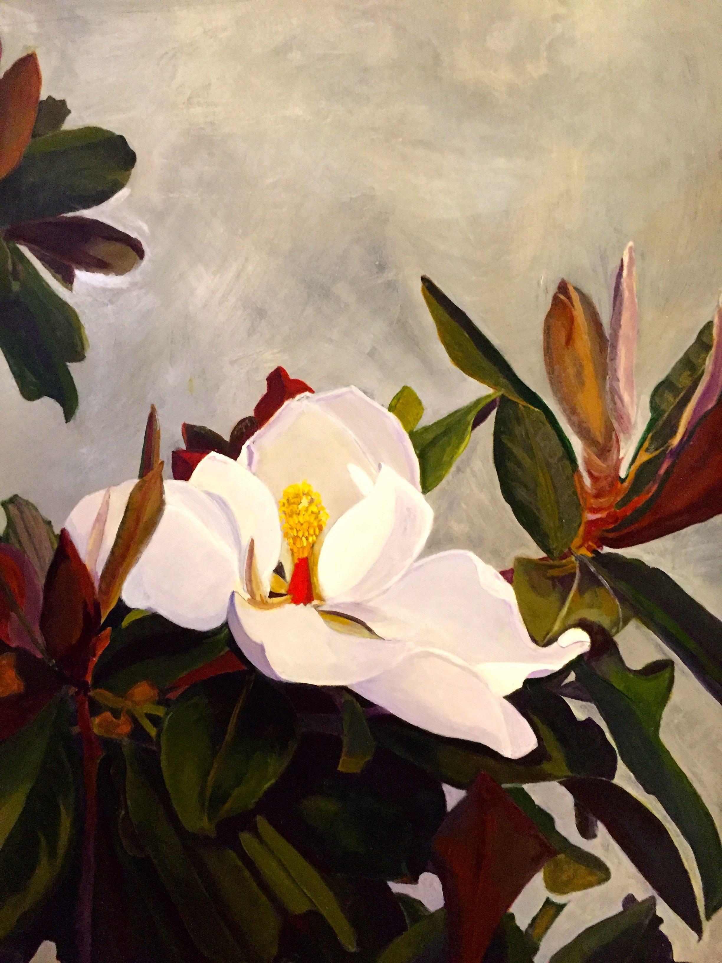 """""""Darwin's Magnolia grandiflora"""" 2016"""