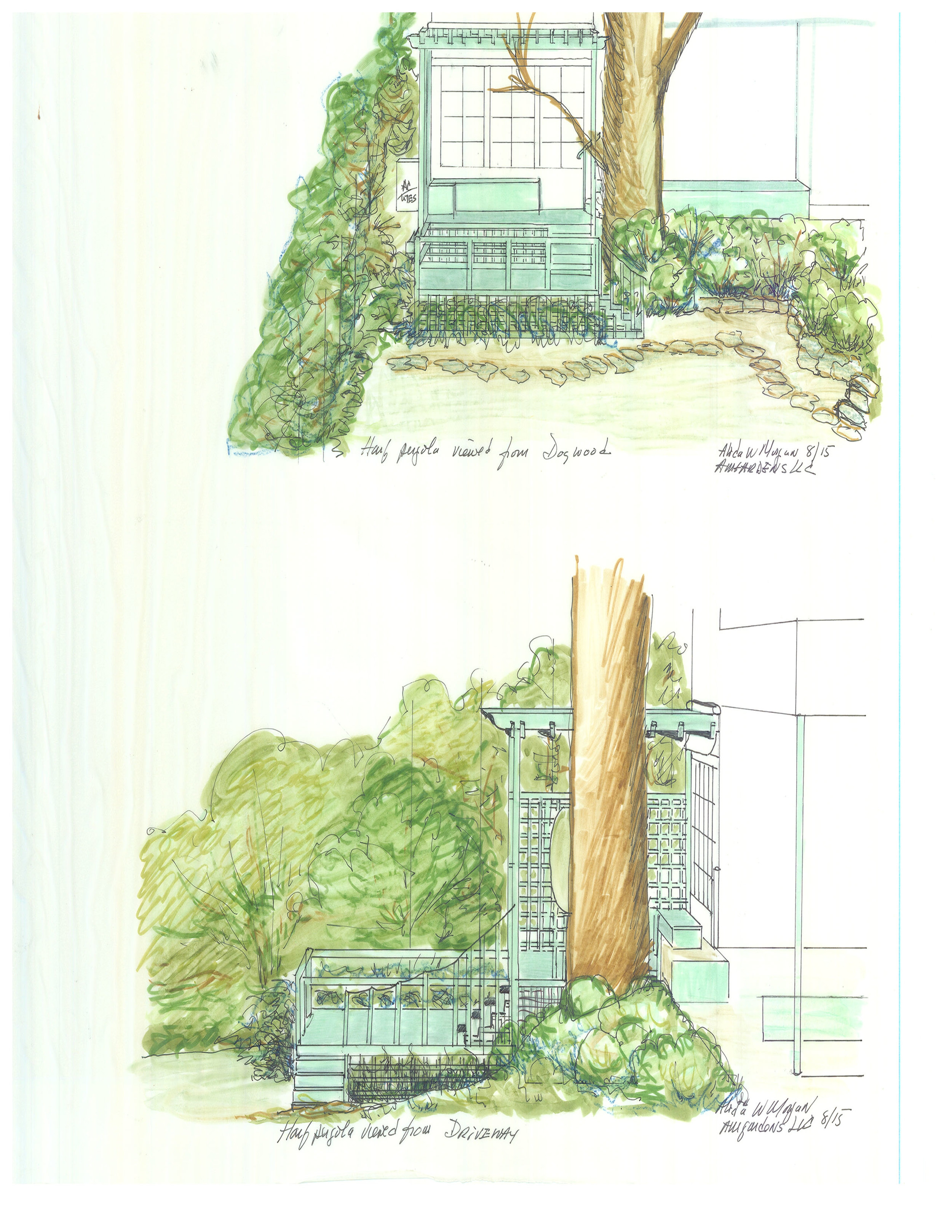 DC Garden Sketches of Pergola and Deck