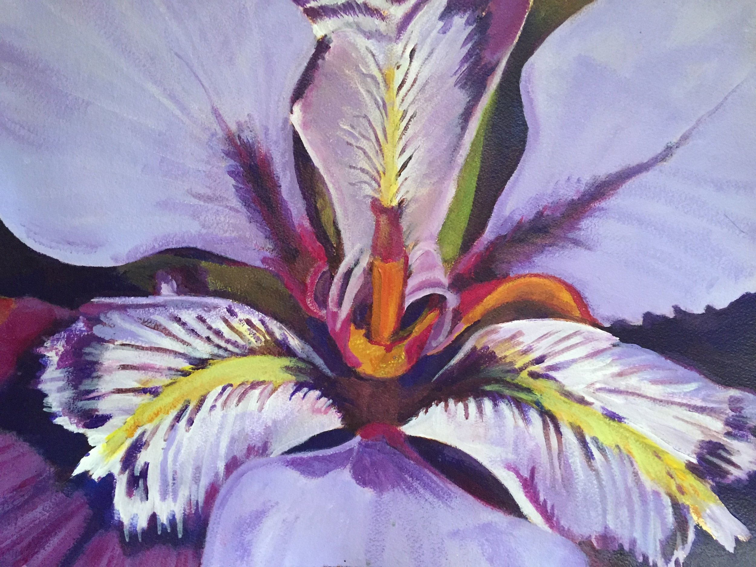 Iris Detail         2017         ca 2x3' acrylic on paper           $3000