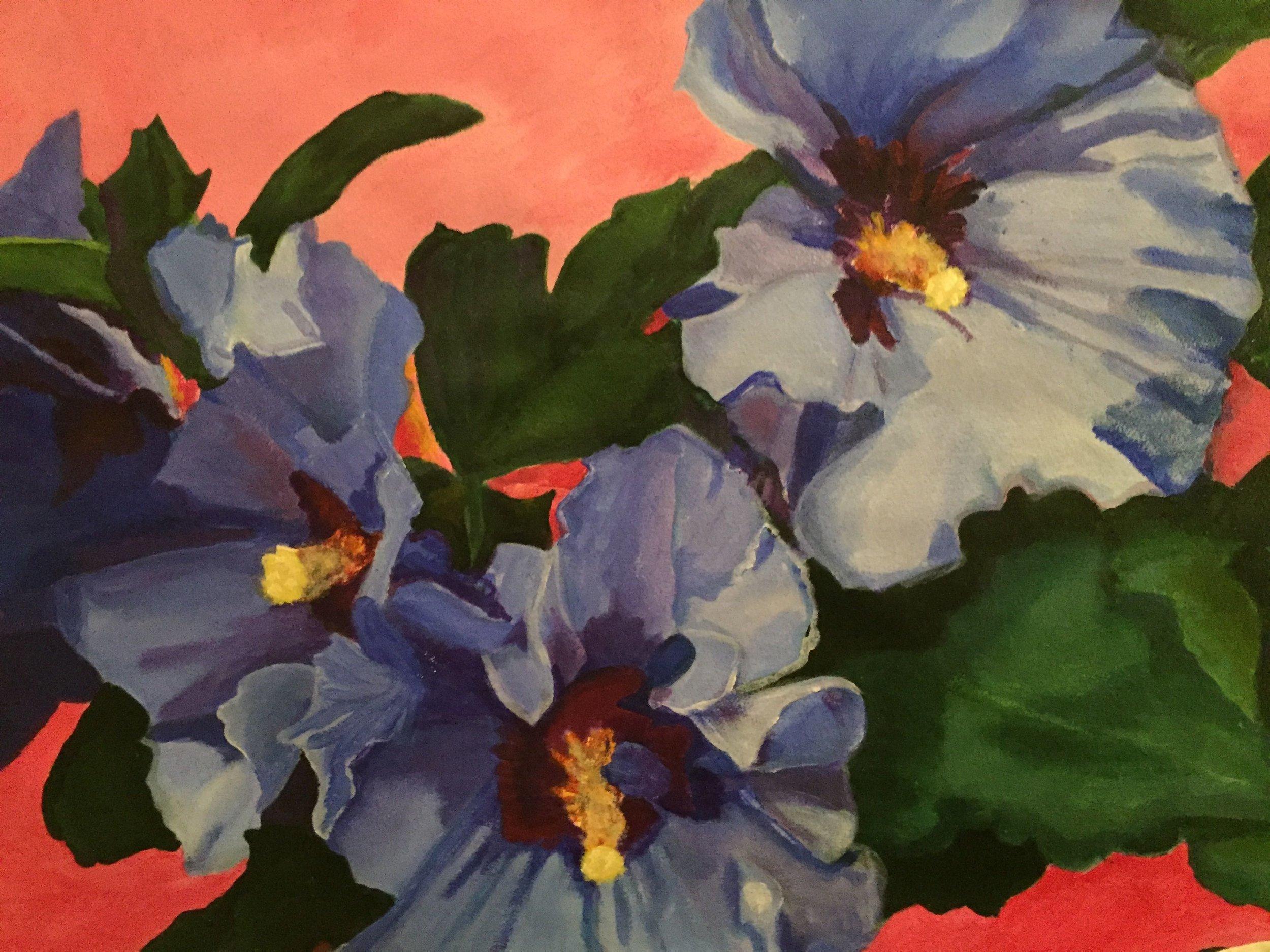 Hibiscus syracuse Blue Bird2016ca 2x3' acrylic on paper  $3000