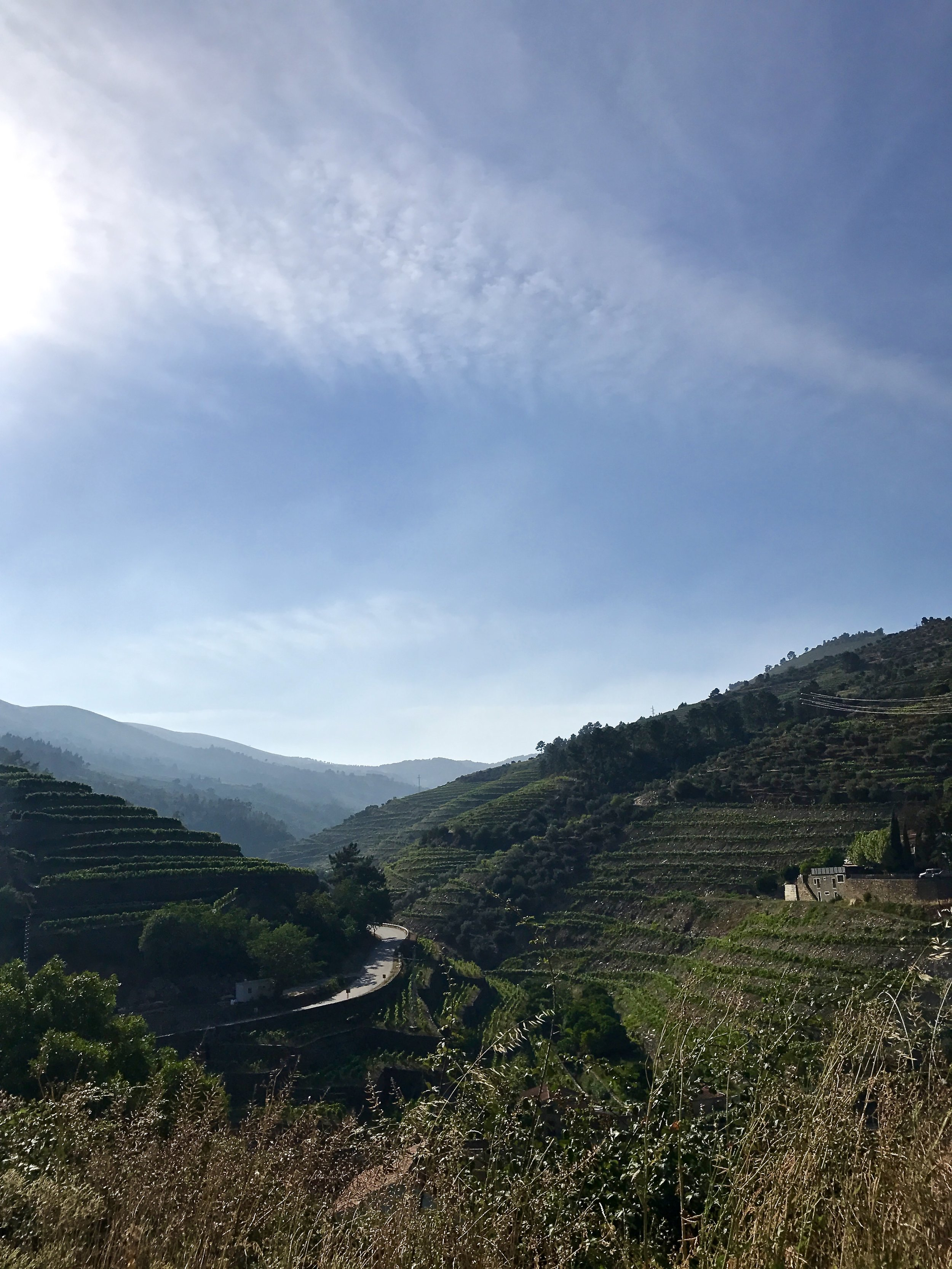Douro Valley - May-June 2017