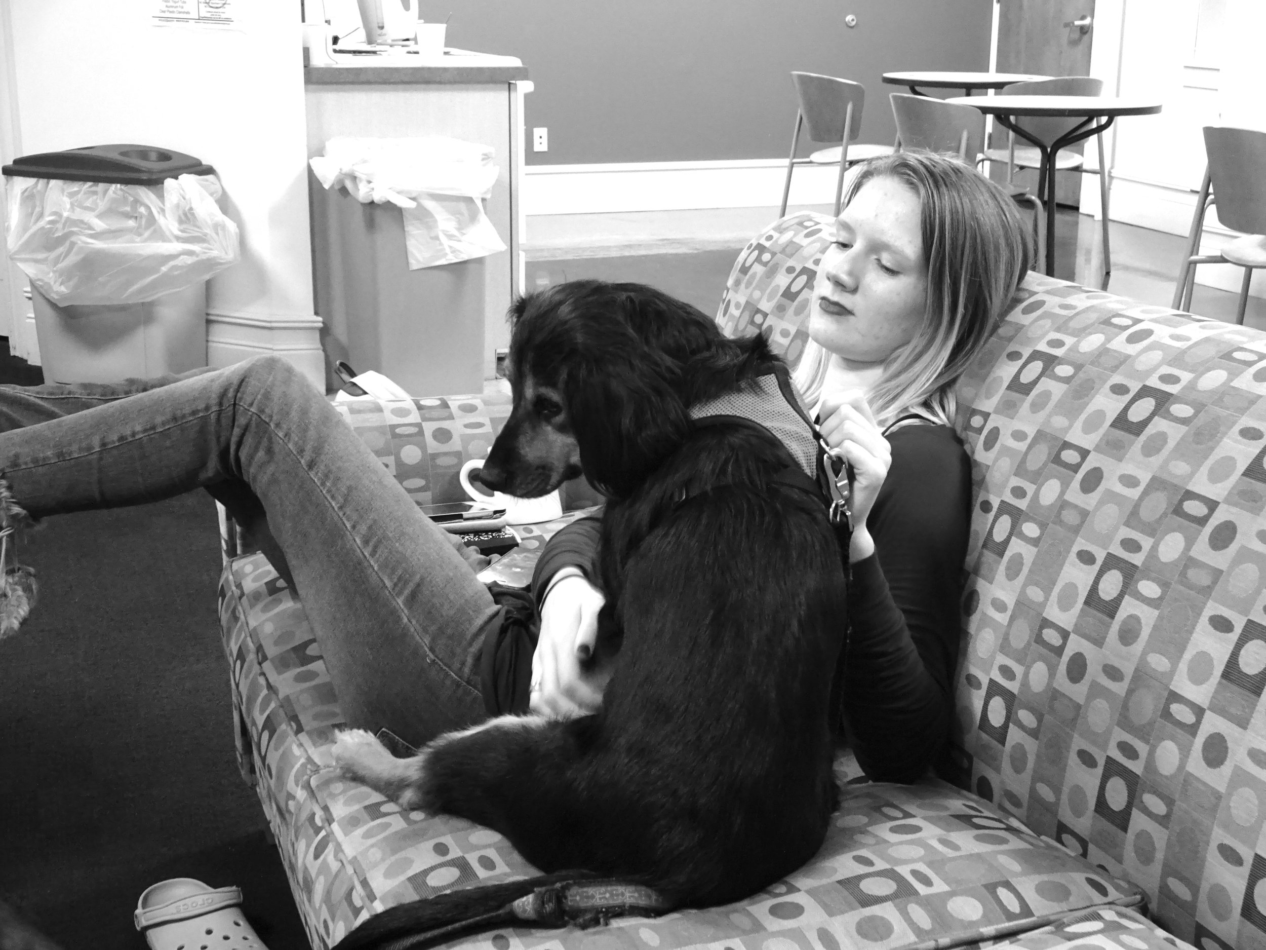 Photo by Shiloh Frederick '17 Georgie Hoffman '17 seeks comfort from Walter, Ella Sevier's emotional support dog, while watching election results in the Porter common room.