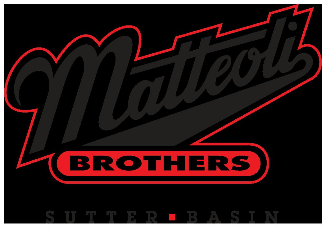 Sponsor Logo- Matteoli.png
