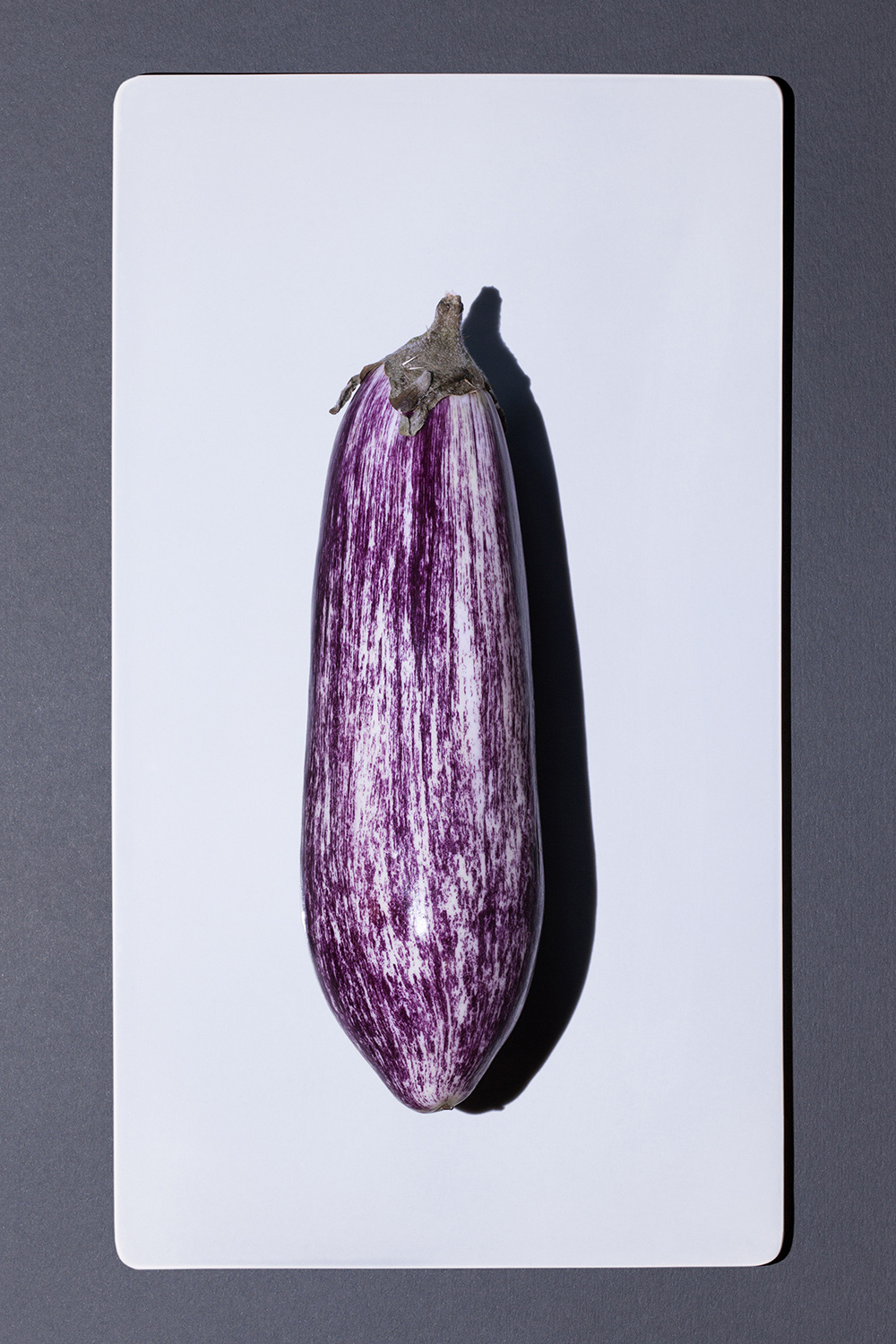 aubergine_striped_2154.jpg